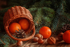 Christmas  composition wicker Basket with Royalty Free Stock Image