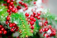 Christmas composition. Christmas wreath with cranberry and spruce Stock Photos