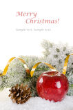 Christmas concept background with fir tree, apple, spices and co Stock Image