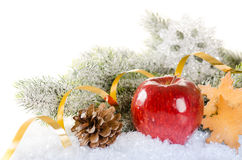 Christmas concept background with fir tree, apple, spices and co Royalty Free Stock Image