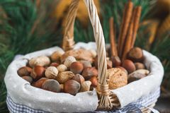 Christmas Concept Basket with Assorted Mixed Nuts Peanuts Almonds Hazelnuts Pine Branch Yellow Blanket Cozy Healthy Concept Autumn. Winter Background stock images