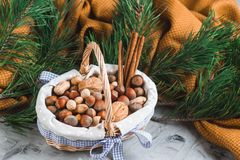 Christmas Concept Basket with Assorted Mixed Nuts Peanuts Almonds Hazelnuts Pine Branch Yellow Blanket Cozy Healthy Concept Autumn. Winter Background stock photos