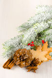 Christmas concept composition with fir tree, pine cone, spices a Stock Photography