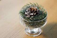 Christmas fir decoration with cone in dessert bowl stock photography