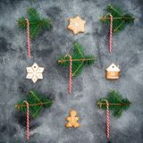 Christmas concept. Gingerbread, candy cane and winter plants on dark background. New year composition. Flat lay. Top view. Christmas concept. Gingerbread, candy royalty free stock photo