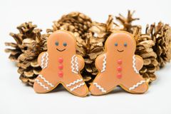 Christmas concept. Christmas gingerbread with golden pine cones Stock Photo