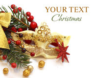 Christmas concept with gold carnival mask Stock Photos