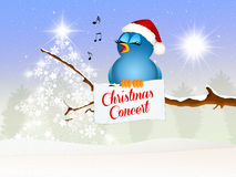 Christmas concert Royalty Free Stock Photo