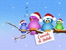 Christmas concert Royalty Free Stock Photo