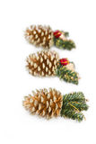 Christmas cone Stock Images