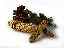 Christmas cones. And festive mood Royalty Free Stock Photo