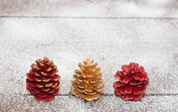 Christmas cones Stock Photography