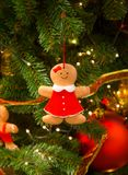 Christmas coockie decorations on the branches of fir tree.  Royalty Free Stock Photography