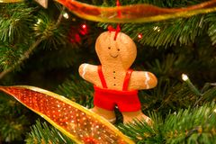 Christmas coockie decorations on the branches of fir tree.  Stock Photo