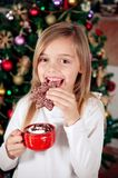 Christmas cookie Royalty Free Stock Photo