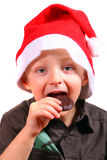 Christmas Cookie Stock Image