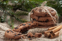 Christmas cookie with chocolate Royalty Free Stock Photography