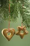 Christmas cookie hanging from fir branch Stock Images
