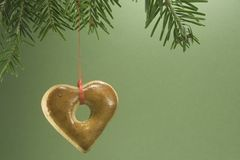 Christmas cookie hanging from fir branch Royalty Free Stock Photo