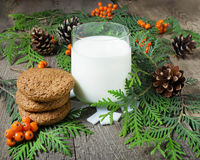 Christmas cookie and milk for Santa Stock Photo