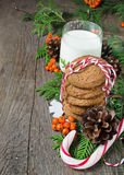 Christmas cookie and milk for Santa Stock Photos