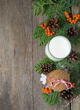 Christmas cookie and milk for Santa Royalty Free Stock Photos