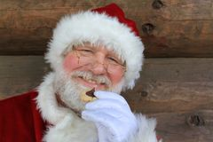 Christmas Cookie Santa Stock Image