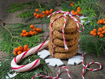Christmas cookie for Santa Stock Photography