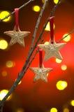 Christmas cookies as tree decoration Royalty Free Stock Photos