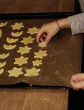 Christmas cookies. A boy places christmas cookies on a tray for the oven Royalty Free Stock Photos