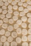 Christmas cookies in Christmas time in detail. Photographed royalty free stock photography