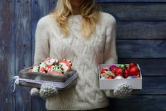 Christmas cookies and decorations Royalty Free Stock Images