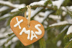 Christmas cookies on a fir outdoors Stock Images
