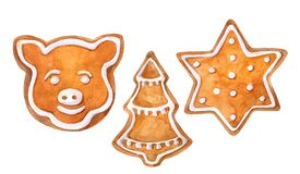 Christmas cookies gingerbread set: star, christmas tree and pig. Watercolor hand drawn illustration. vector illustration