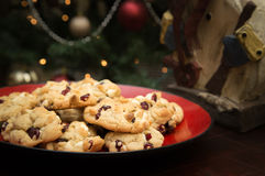 Christmas Cookies. Plated Christmas cookies in front of a Christmas tree Royalty Free Stock Photo