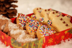 Christmas cookies with snow Stock Images