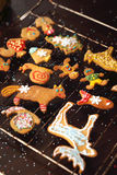 Christmas cookies spicy. Royalty Free Stock Image