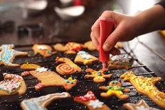 Christmas cookies spicy. Royalty Free Stock Photography