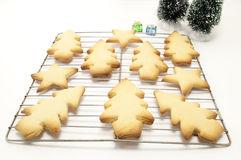 Christmas Cookies on a Wrack. Assorted christmas cookies placed on a wire wrack with two trees behind Royalty Free Stock Images