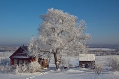 Christmas in the countryside Royalty Free Stock Photos