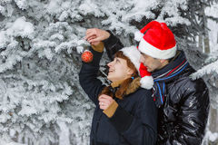Christmas couple. Stock Images