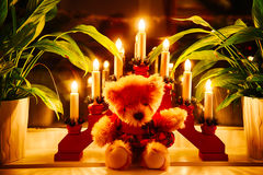 Christmas Cuddle Bear. Chrismas Cuddle Bear surrounded by lights and plants royalty free stock photos