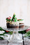 Christmas cup cakes Stock Image