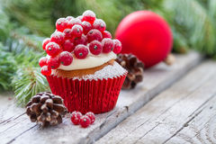 Christmas cupcake Royalty Free Stock Photo