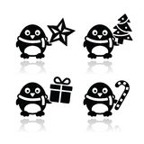 Christmas cute penguin  icons set Stock Photos