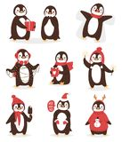 Christmas cute penguin vector character cartoon bird celebrate Xmas poses - play, fly and happy penguin face smile. Christmas cute penguin vector character vector illustration