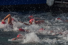 CHRISTMAS DAY HARBOUR SWIM 2015, BARCELONA, Port Vell - 25th December: swimmers race on 200 meters distance Royalty Free Stock Photos