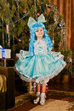 Christmas Day Royalty Free Stock Photo