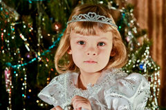 Christmas Day Royalty Free Stock Photography