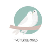 12 christmas day  - two turtle doves Royalty Free Stock Photo